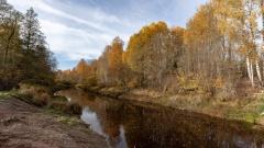 Река Кересть, Чудовский район