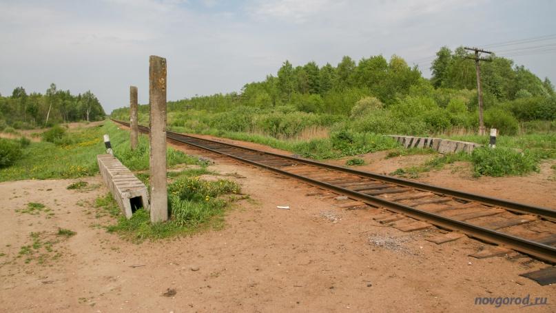 Железнодорожная платформа Болотная. Фото из архива интернет-портала «Новгород.ру» ©