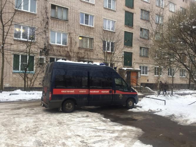 © Фото пресс-службы следственного управления СК РФ по Новгородской области