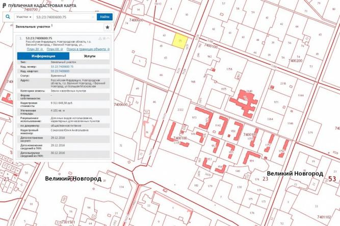 Участок, где предполагается построить кафе, отмечен жёлтым. Скриншот публичной кадастровой карты ©