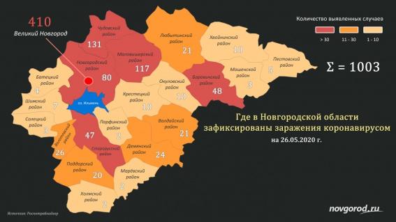 Новые 89 случаев коронавируса выявили в половине муниципалитетов Новгородской области