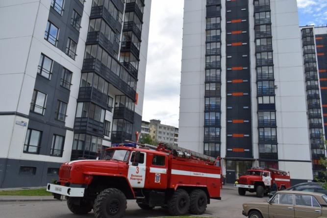 © Пресс-служба МЧС по Новгородской области