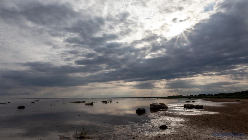 Озеро Ильмень. © Фото из архива интернет-портала «Новгород.ру»