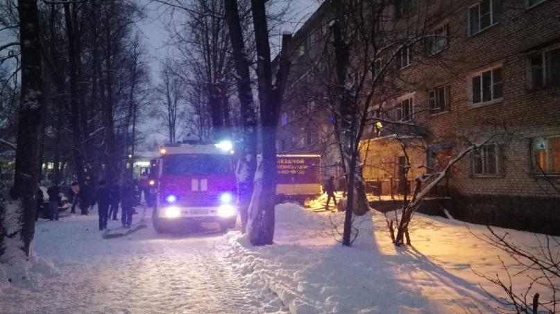 © пресс-служба МЧС России по Новгородской области