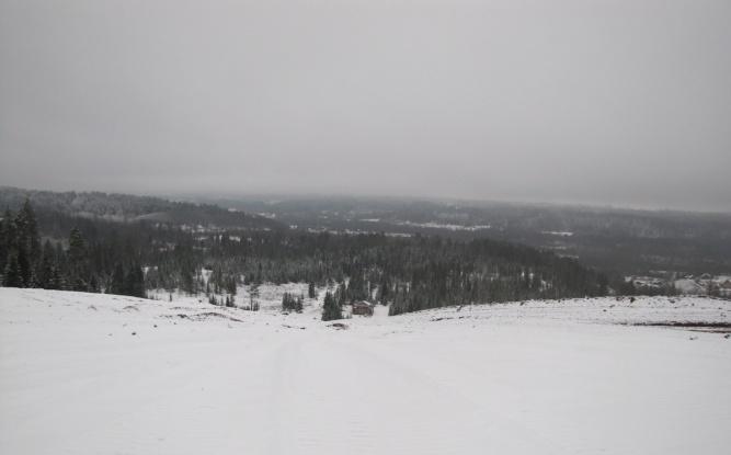 Гора на горнолыжном комплексе, вид сверху. Фото предоставлены администрацией Любытинского района ©