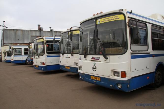 Основа арендованного парка — ЛиАЗы синего цвета.