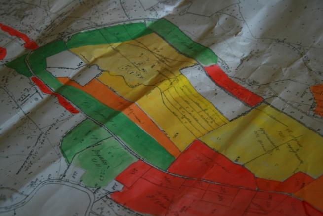 Зеленым цветом выделены участки Ивана Пиреева - данные администрации Бронницкого сельского поселения.
