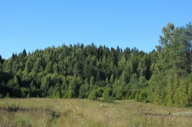 «Холмы «Бальдазары». © oopt.aari.ru