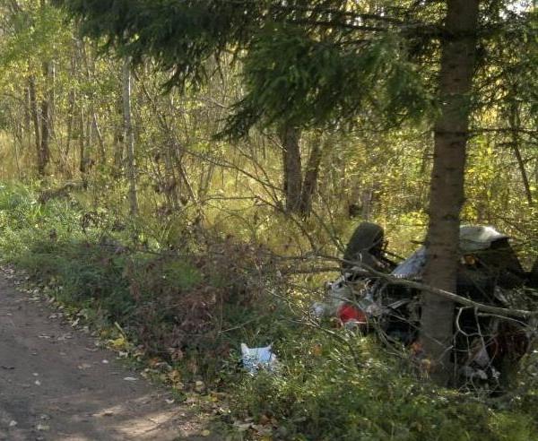 Водитель без прав, 17-летний подросток, совершил съезд в кювет. © Фото УГИБДД по Новгородской области