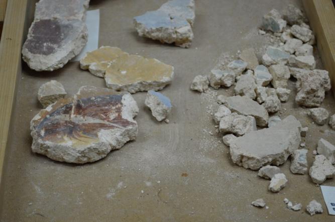 Фрагменты фресок из церкви Благовещения на Городище. © Фото пресс-службы музея-заповедника