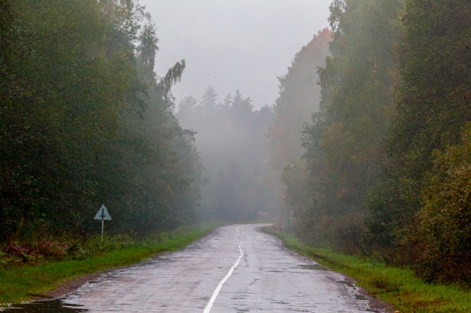 Дорога Старая Русса — Парфино. © Фото из архива интернет-портала «Новгород.ру»