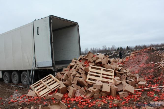 Уничтожение запрещённой продукции в Маловишерском районе. © Фото из архива интернет-портала «Новгород.ру»
