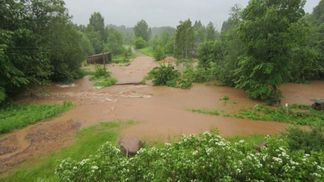 Деревня Николаевка Любытинского района, где смыло пешеходный мост. © Оксана Кондратович
