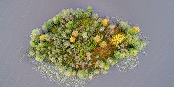 Панорама: Озеро Моисеевское