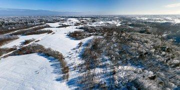 Район рек Чересица и Явонь. Большое количество следов диких зверей.