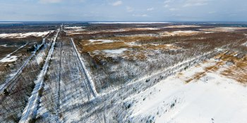 Панорама: Бывшие торфоразработки в районе посёлка Тёсово-Нетыльский