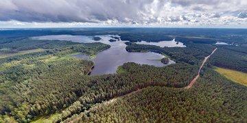 Озеро Разлив, или Розливы, на самом деле является водохранилищем боровновской ГЭС, строительство которой началось в конце 1925 года. На реке Шегринка была поставлена плотина и прорыт канал длиной 1 260 метров, по которому вода направлялась к низине, где располагались озёра — Белое, Хлебное, Чёрное, Боручье и Пучеглазое. Таким образом в низине образовалось водохранилище, именуемое сейчас Розливы, площадь которого составила 3 км².  <p>Электростанция проработала до середины 80-х годов XX века, после чего её деятельность прекратилась. В 1997 году ГЭС была отнесена к объектам культурного наследия и зарегистрирована в Государственном списке памятников истории и культуры Новгородской области.