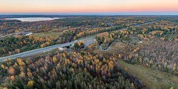 Панорама: Река Боровна