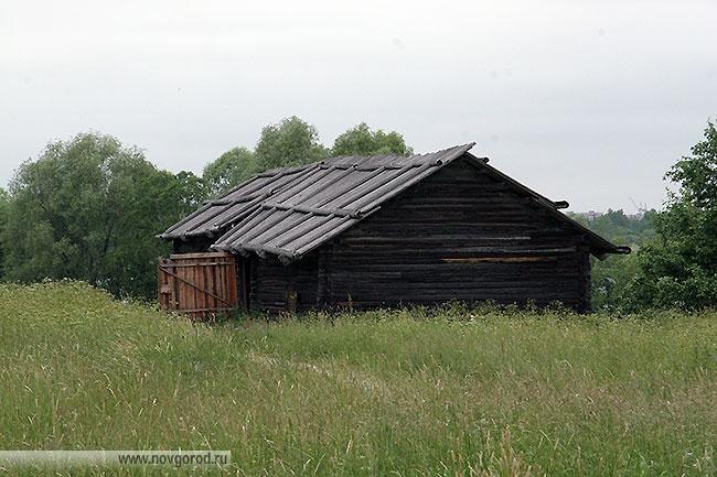 Гумно с ригой из деревни Горбухино Пестовского района